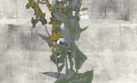Bouquet Panel 1