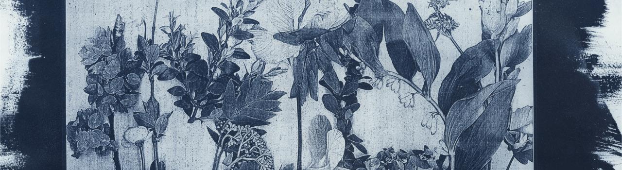 Leaf Cyanotype